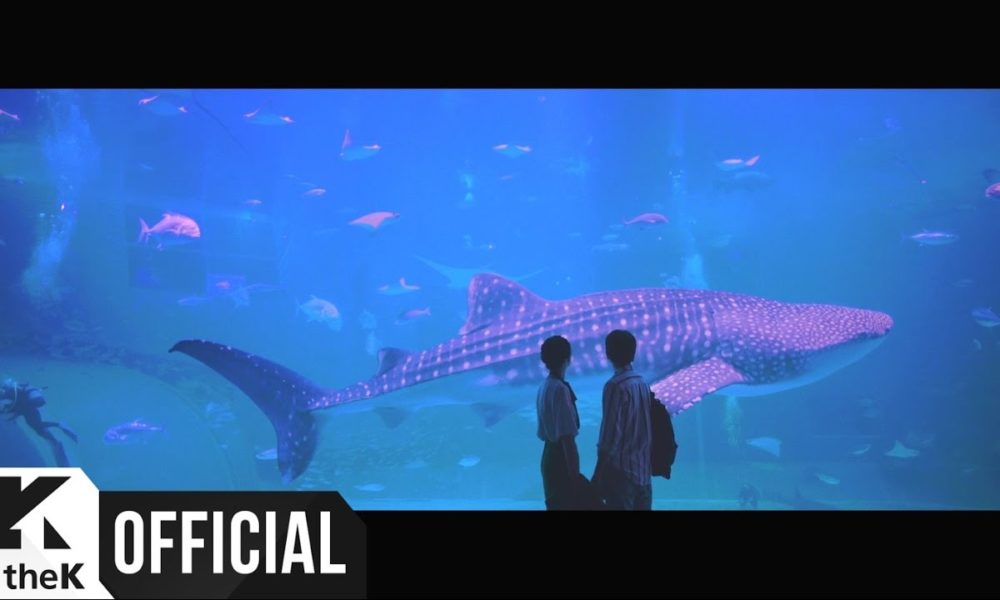 Sandeul B1A4 Debut Solo Dengan MV 'Stay As You Are'